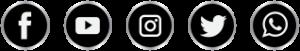 icon sociaux logo premium